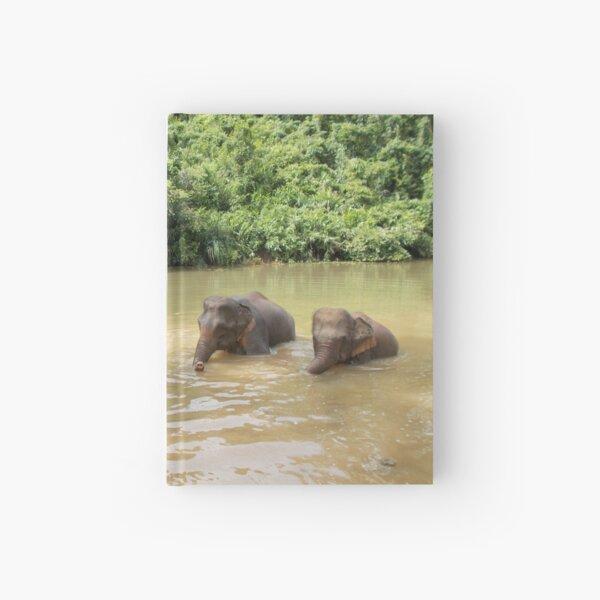 Elephants A-Washin' Hardcover Journal