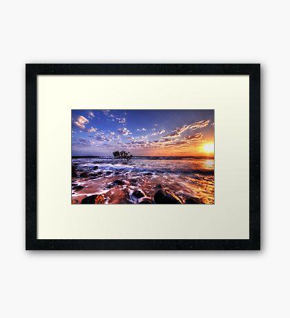 Seaside Awakenings Framed Print