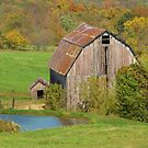 Barn by the Pond by lorilee