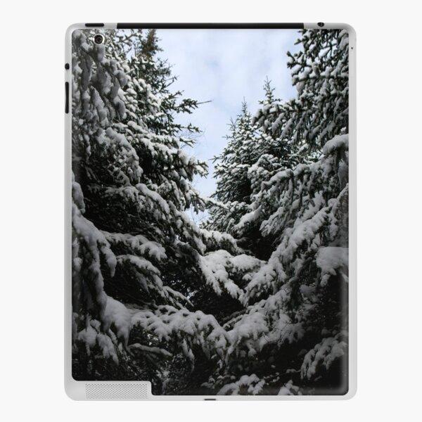 Northern woods, light and dark iPad Skin