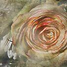 July Rose by kayzsqrlz
