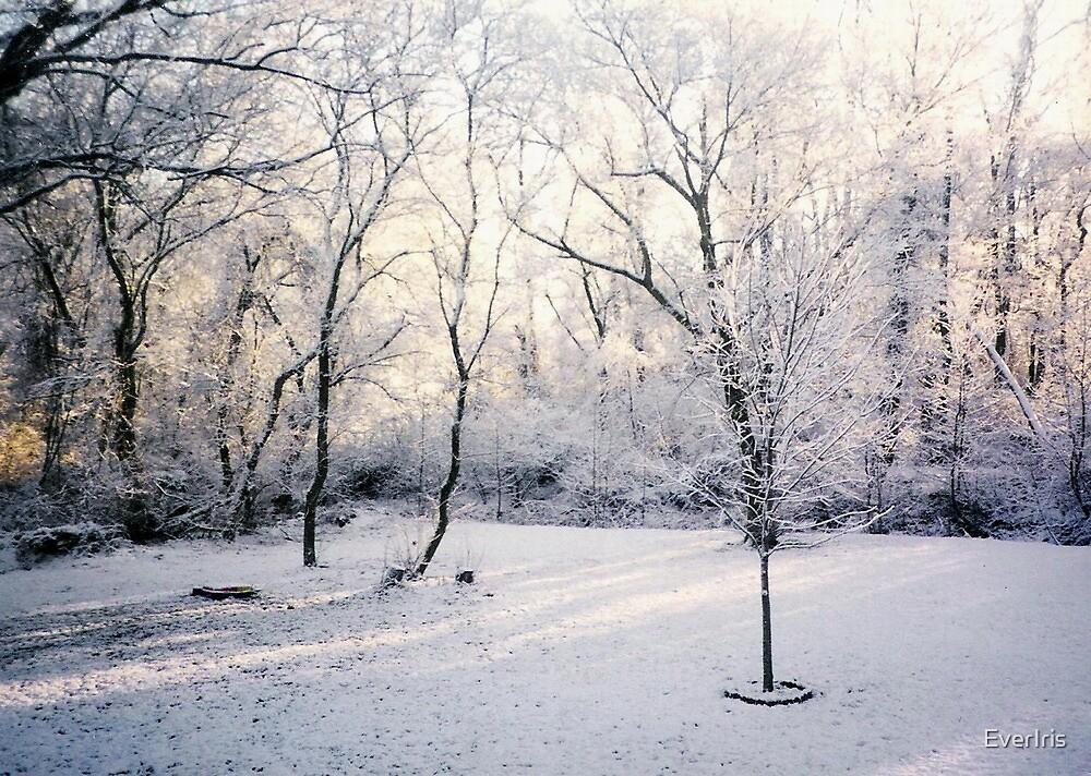 Winter Dusk by EverIris