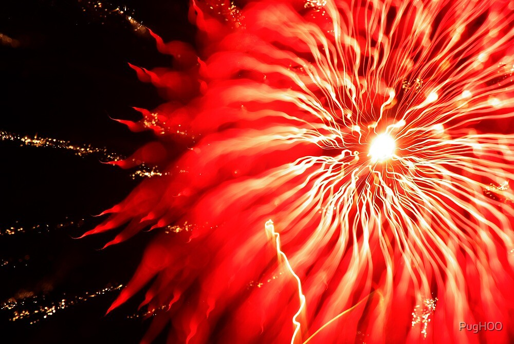 November Fireworks 20xx by PugH00