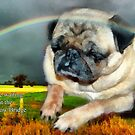 I'll Be Waiting At Rainbow Bridge by Eve Parry
