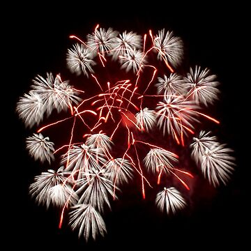 December Fireworks 20xx by PugH00