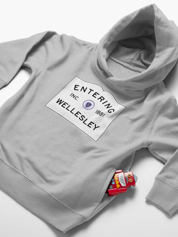 Alternate view of Entering Wellesley - Commonwealth of Massachusetts Road Sign Toddler Pullover Hoodie