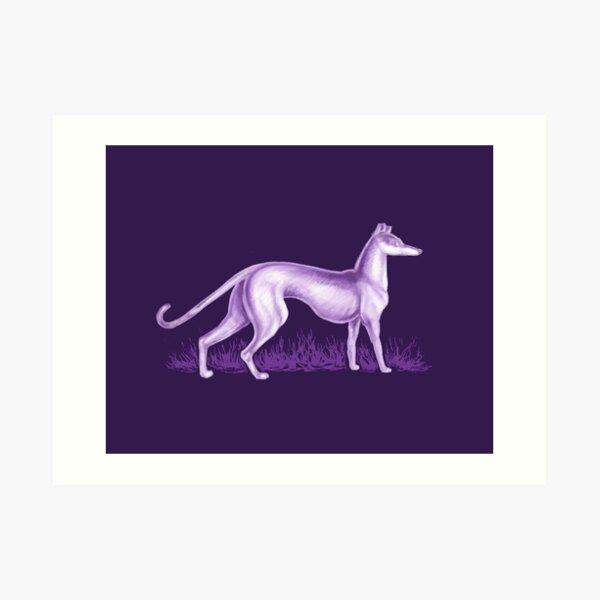 Purple Whippet Art Print