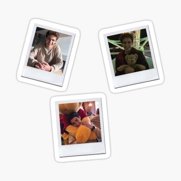 Joshua Bassett Polaroids Pack Sticker