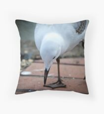 Exploring my world Throw Pillow