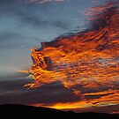 fire in the sky by Martina  Stoecker