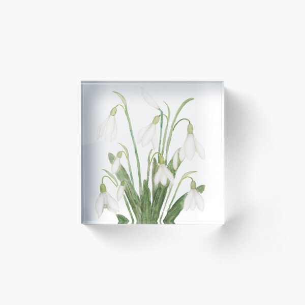 white snowdrop flower botanical watercolor painting  Acrylic Block
