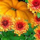 Joy of Autumn by AngieDavies