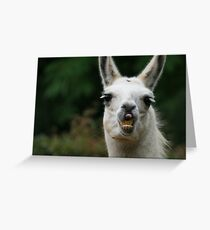 People tell me I have a corny grin Greeting Card