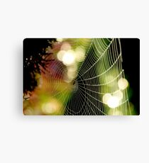 Colored Web Canvas Print