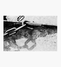 Lyme Chain 02 Photographic Print