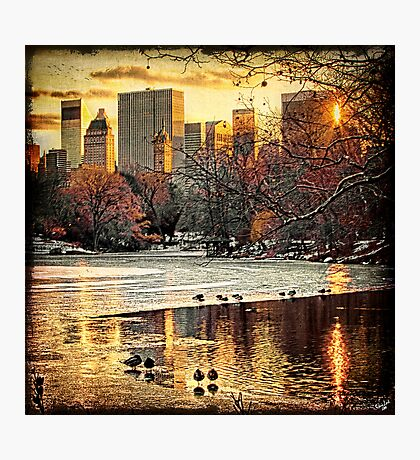 Central Park Looking Towards Fifth Avenue Photographic Print