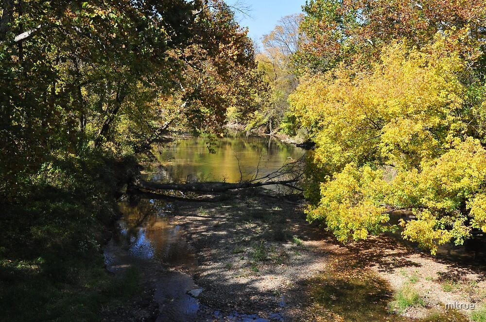 Stream early autumn-Parker, IN by mltrue