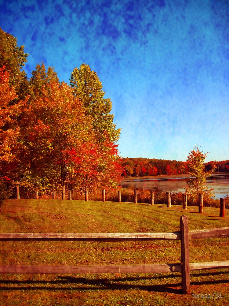 The Fence & The Lake by teresa731