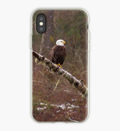 Skagit River Bald Eagle (Small) iPhone case. iPhone Case