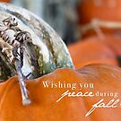 Wishing for Peace This Fall by Franchesca Cox