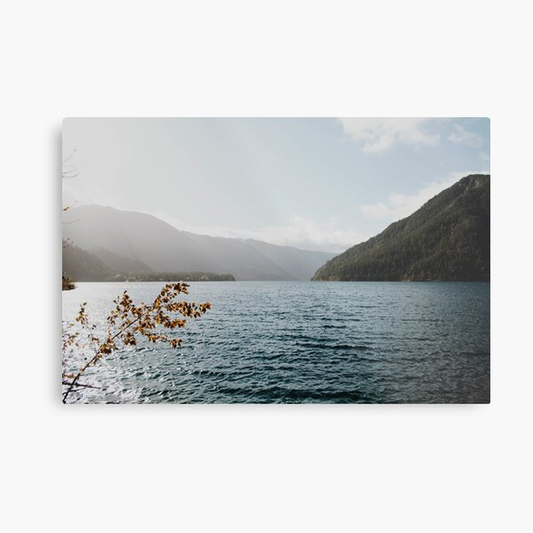 sunny lake Metal Print