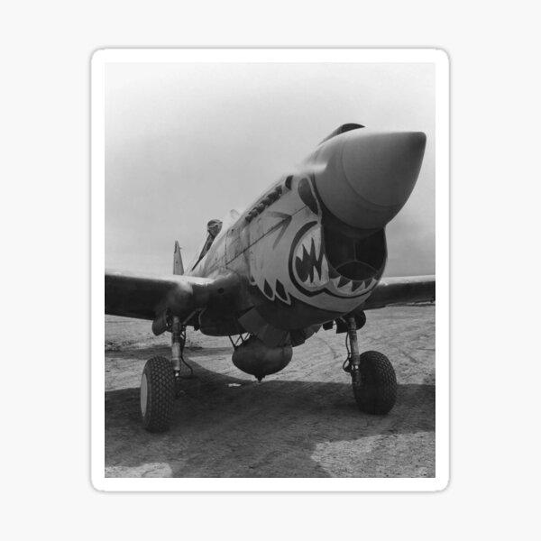 Flying Tigers P-40 Warhawk requin bouche dents Nez Art avion militaire Decal