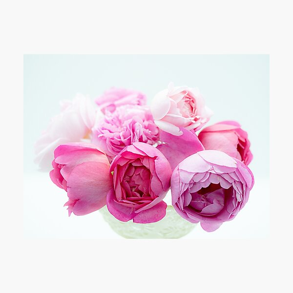 A Bouquet Of English Roses From My Rose Garden #6 Photographic Print