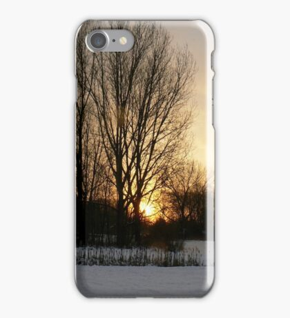 Sunset in tree iPhone Case/Skin