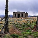 Built To Last by Charles & Patricia   Harkins ~ Picture Oregon