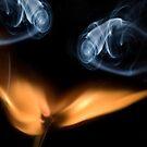 Burning match, close up by Sami Sarkis