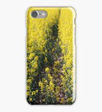 Rapeseed iPhone Case/Skin