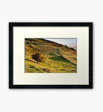 Lone Tree on Hereford Beacon Framed Print
