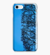 Winter Tree Form, Blue iPhone Case/Skin