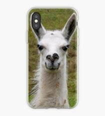 Lama iPhone Case