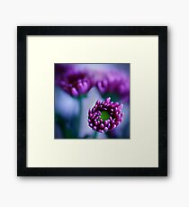 Colour Of Life XXXIV [Print & iPad Case] Framed Print