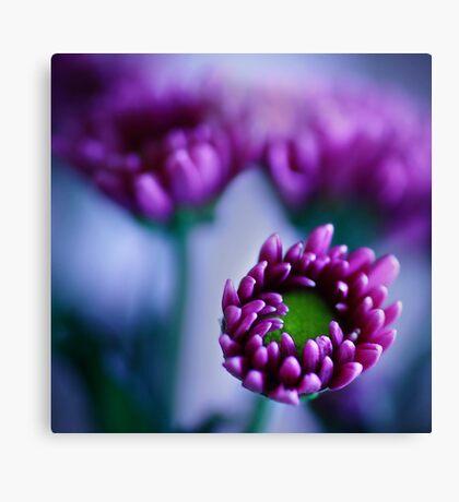 Colour Of Life XXXIV [Print & iPad Case] Canvas Print