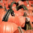 Pumpkin Parade by Sally Kady