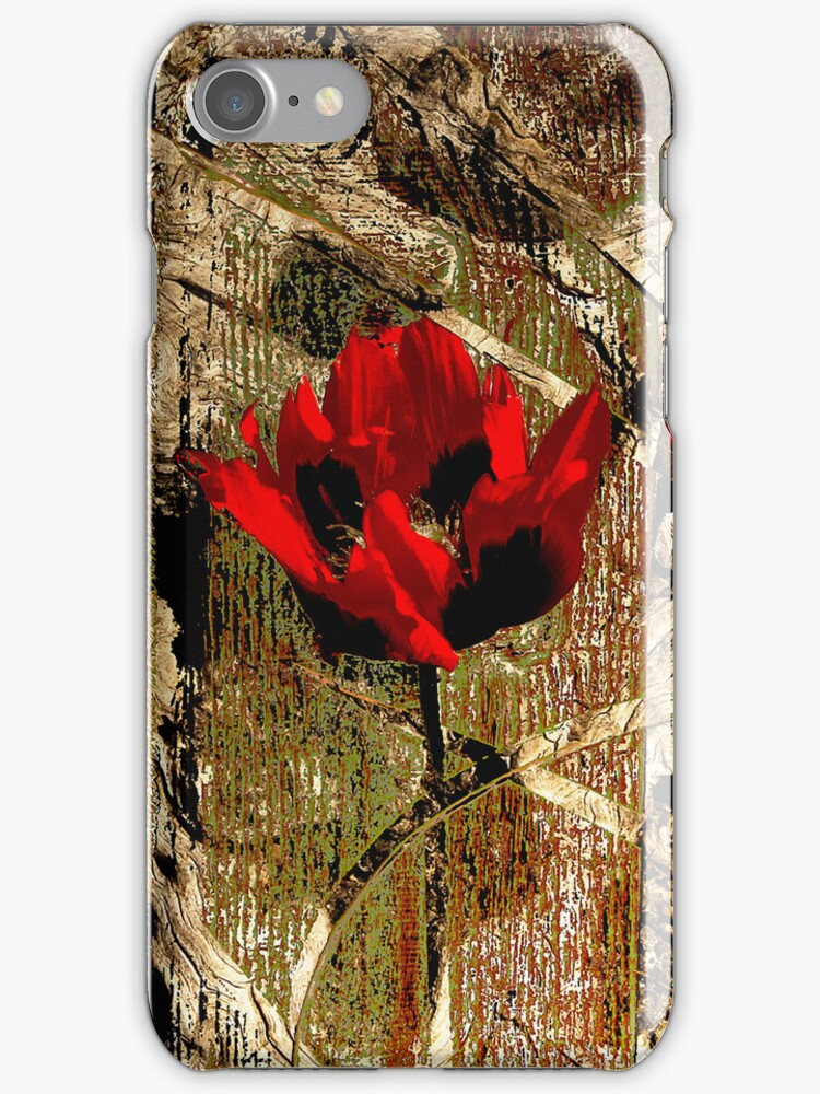 Urban Decay iPhone Case by Carol Bleasdale