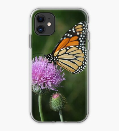 Monarch on Thistle - iPhone Case iPhone Case