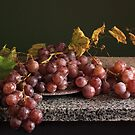 Cardinal Grape by panganatalie