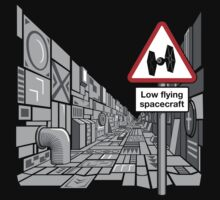 Low Flying Spacecraft