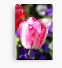Spring Has Sprung - Strawbs n Cream Canvas Print