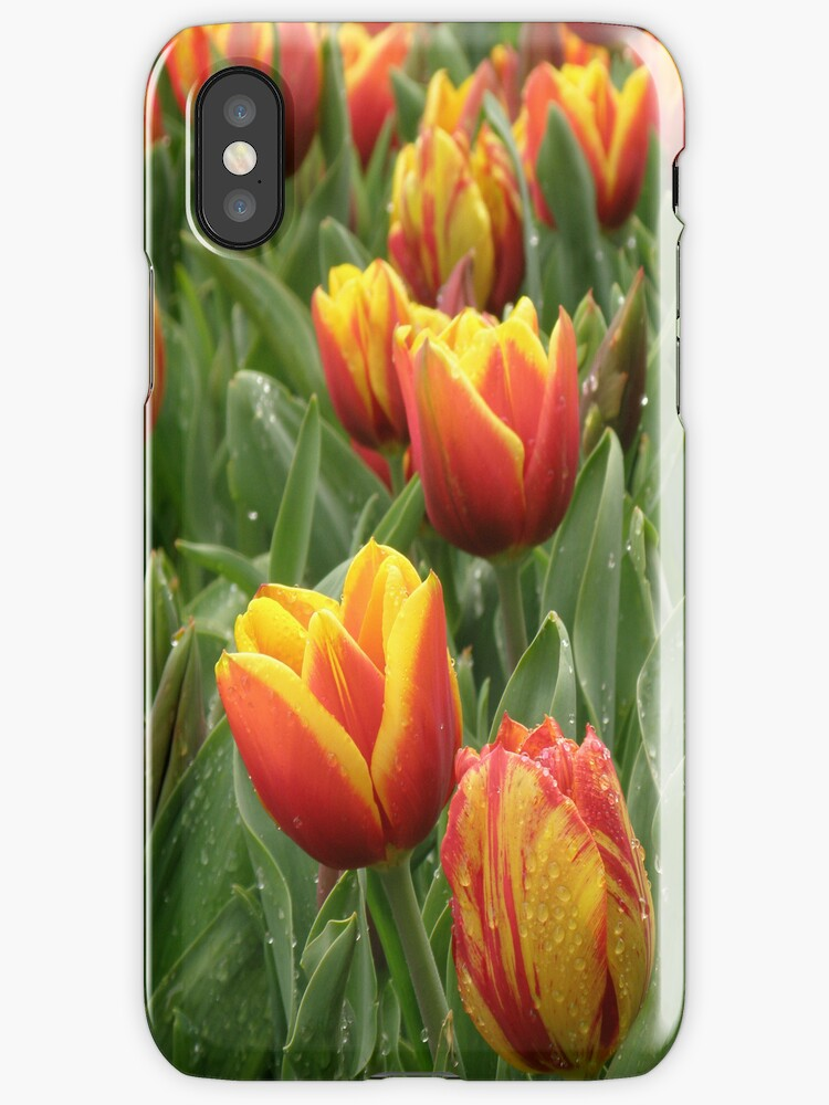 Dainty Tulips (iPhone case) by CapturedByKylie