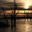 Mulwala iPhone cover by Lisa Kenny