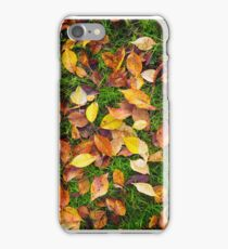 Atumn Leaves on Green Grass iPhone Case/Skin