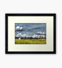 Canola & Clouds Framed Print