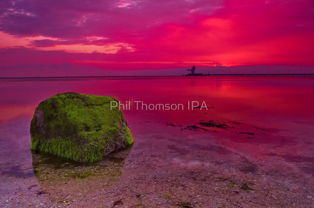 """Dawn Solitude"" by Phil Thomson IPA"