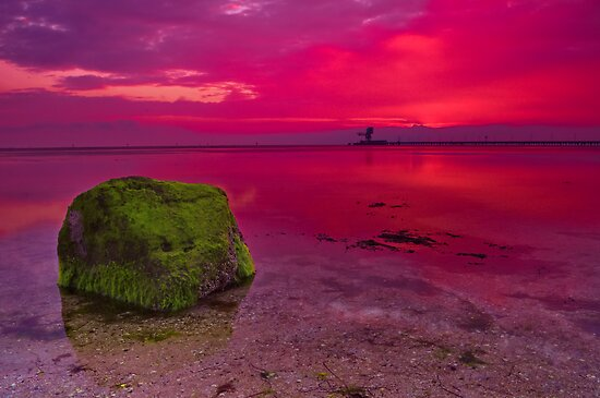 """Dawn Solitude"" by Phil Thomson IPA"