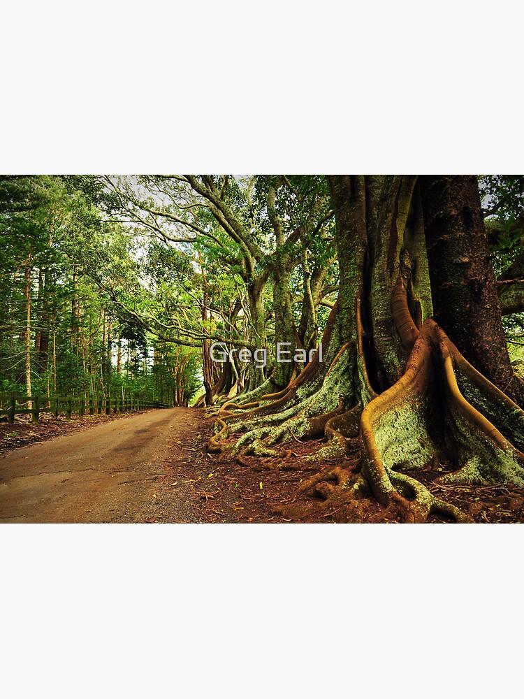 New Farm Road - Norfolk Island by GregEarl