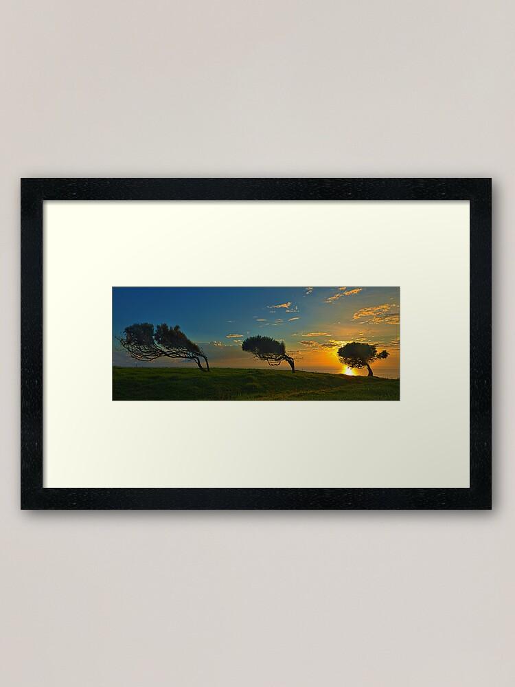 Alternate view of Windswept Trees - Norfolk Island Framed Art Print